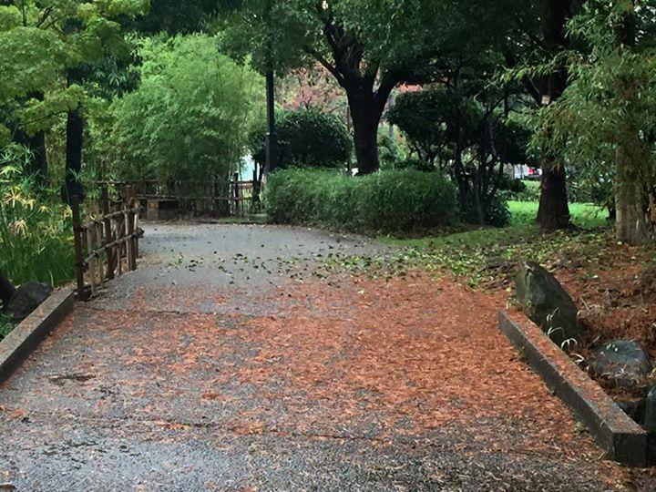 【大庄会 武庫川流域をたどる小さな旅3】